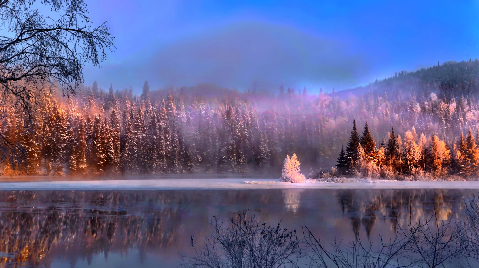 landscape forest trees lake snow sky blue