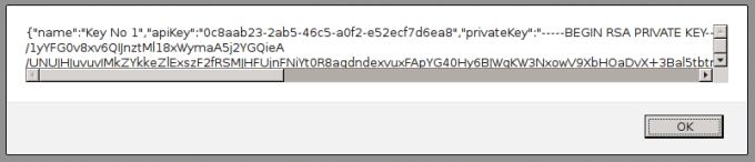 Der erste API key